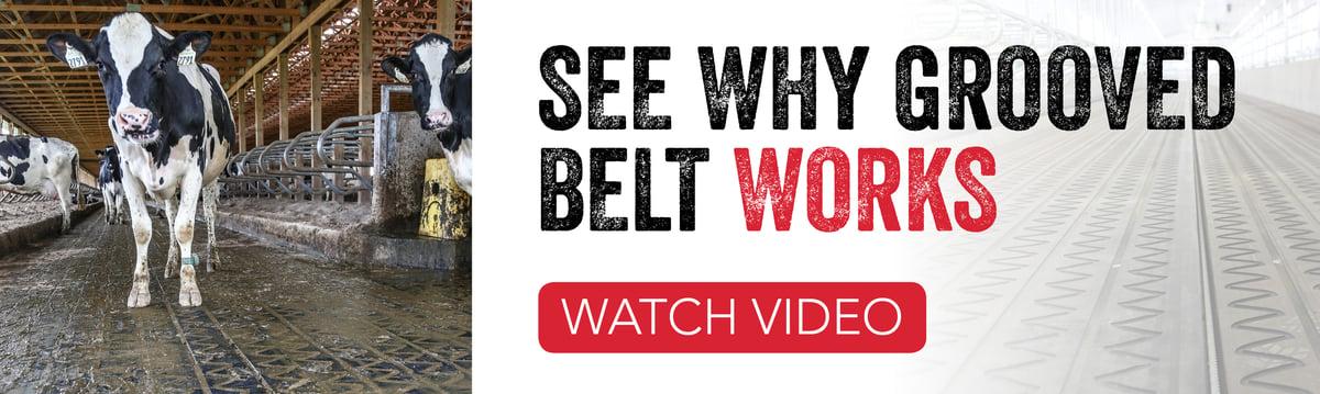 Grooved Belt-1